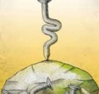 ریشه و کاربرد ضرب المثل«نرود میخ آهنین در سنگ» چیست؟