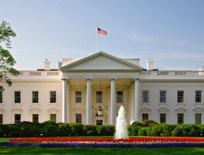 در هر روز چند نفر از کاخ سفید دیدن می کنند؟